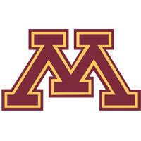 Is an essay required on the University of Minnesota Twin